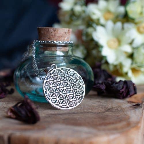 flower of life hanger zilver ketting